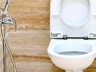 Гигиенический душ для унитаза со смесителем - разновидности выбор установка