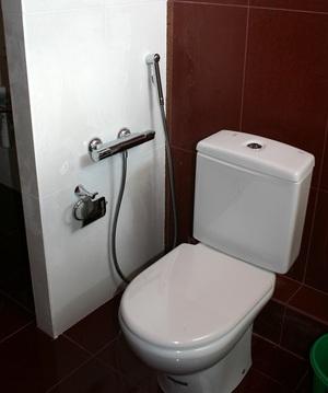 Мини душ для унитаза