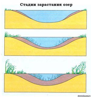 Водоносные слои межпластов